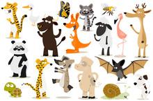 Collection D'animaux Pour En...
