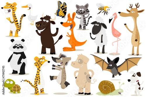 Fotografie, Obraz  collection d'animaux pour enfants