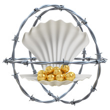 Barbed Wires With Shell And Go...