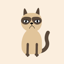 Cute Sad Grumpy Siamese Cat In...