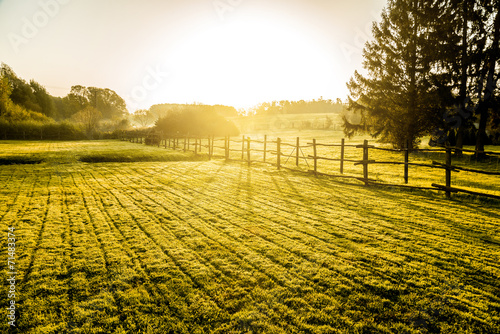 Sunrise over misty grassland Fototapete