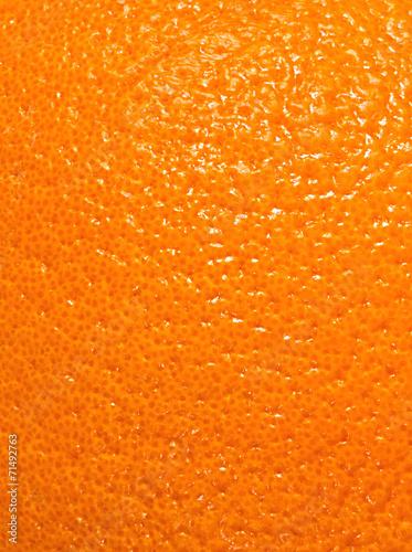 Texture of orange peel Wall mural