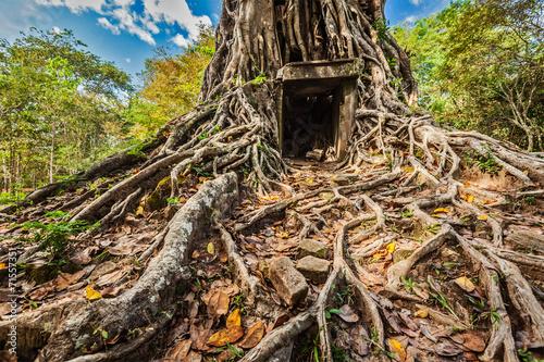 Foto  Sambor Prei Kuk temple ruins, Cambodia