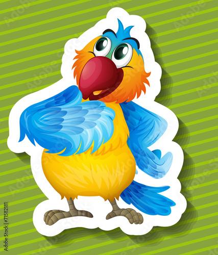 Poster Oiseaux, Abeilles Parrot