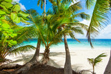 Rest in Paradise - Malediven - Palmen, Himmel und Meer