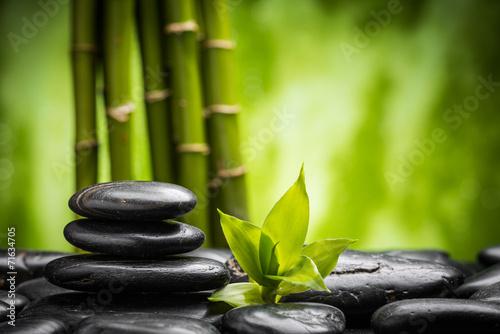 Papiers peints Zen zen stones