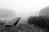 Mgłowy most w monochromatycznym krajobrazie - 71656395