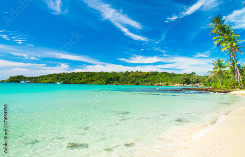 Photo Stands Turquoise Coconut Coast Serenity Shore