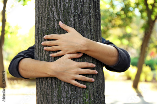 Fotografie, Obraz  Person hugs trunk large tree, close-up