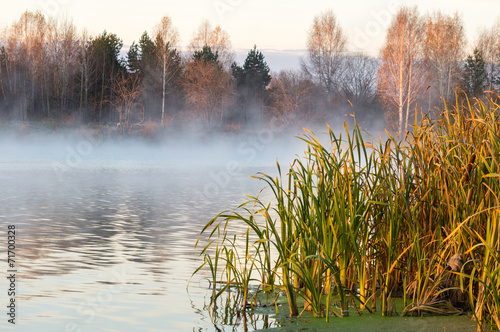 Poster  морозное утро на озере