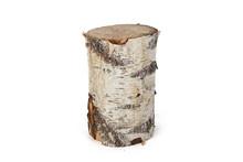 Isolated Photo Of Birch Stump