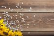 Sunflower on table