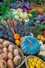 Colorful Autumn Vegetables Display