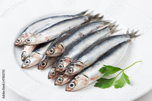 Fresh anchovies Canvas Print