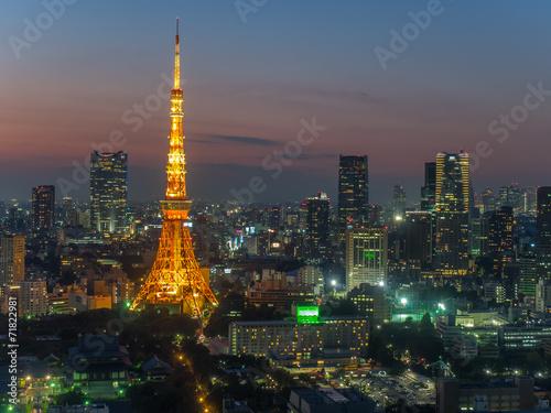 Foto op Aluminium Tokyo 東京タワー
