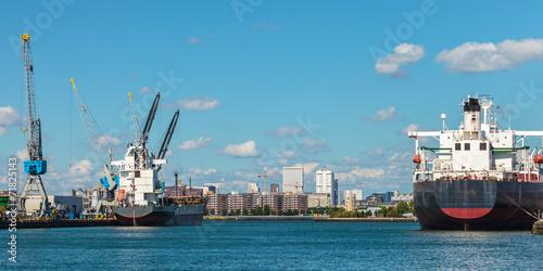 Staande foto Rotterdam Docking container ships in Rotterdam harbor