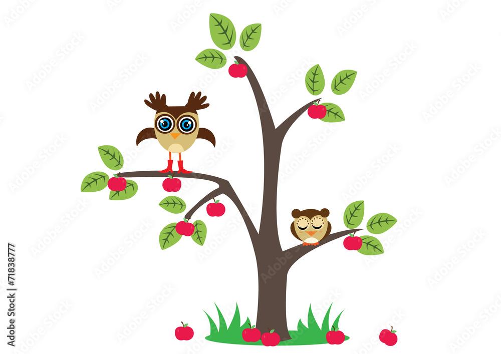 Fototapety, obrazy: sowy na drzewie