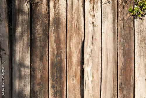 Fotografia, Obraz  fondo madera