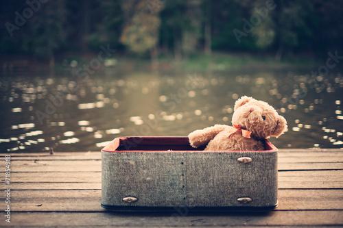 Fotografie, Obraz  Teddy bear in old bag