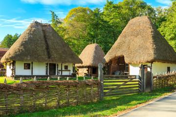 Fototapeta na wymiar Typical peasant houses,Astra Ethnographic museum,Sibiu,Romania