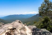 Rocky Ledge Blue Blue Mountain...