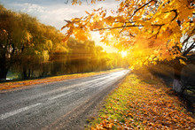 Highway And Autumn