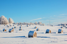 Hay Bales In Winter