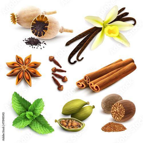 Fototapeta Herbs and spices set obraz