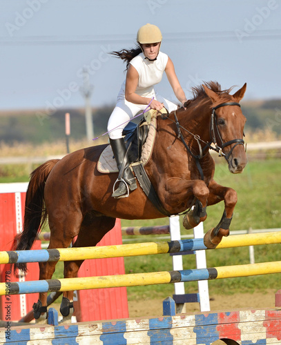 Poster Equitation horse jumping