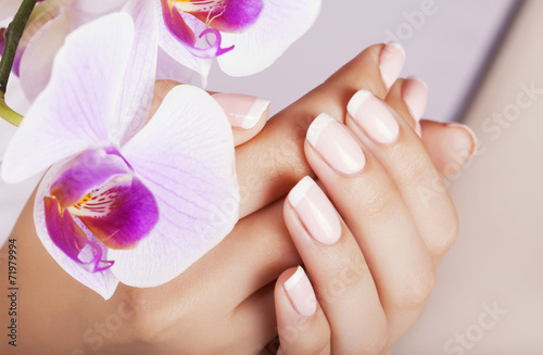 Beautiful woman's nails with french manicure. - 71979994