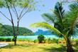 Idyllic Island Exotic Paradise