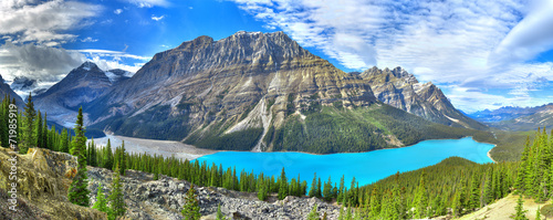 Foto op Canvas Canada Peyto lake panorama