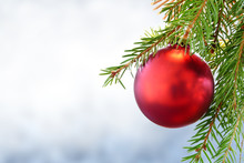 Red Christmas Bauble On Green Fir Branch