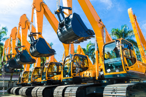 Canvas Prints Palm tree Shovel excavator on Asian rental company site