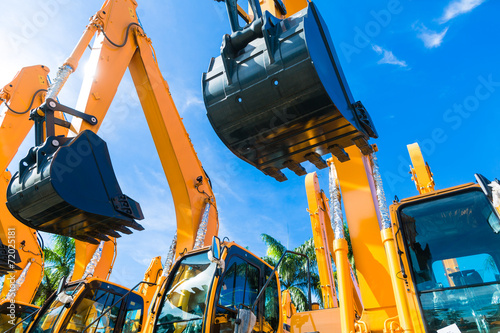 Palm tree Shovel excavator on Asian rental company site