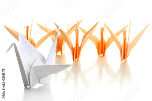 Photo  Individuality concept. Origami birds on light background