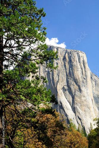 Fotobehang Natuur Park Yosemite national park. California. USA.
