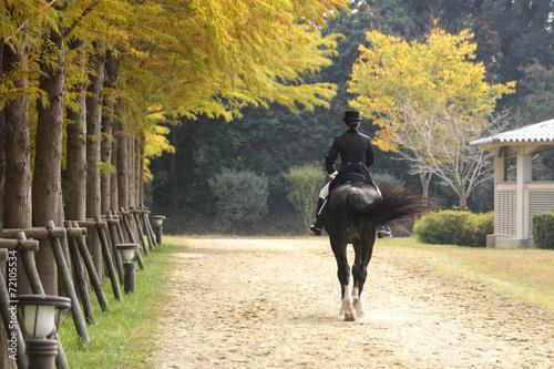 Spoed Foto op Canvas Paardrijden 乗馬