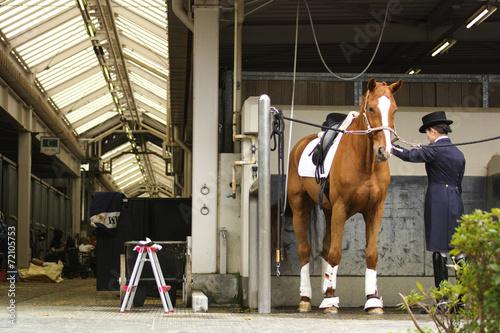 Deurstickers Paardensport 乗馬