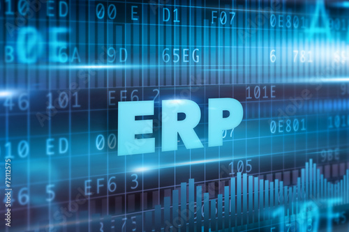 Fotografie, Obraz  ERP concept