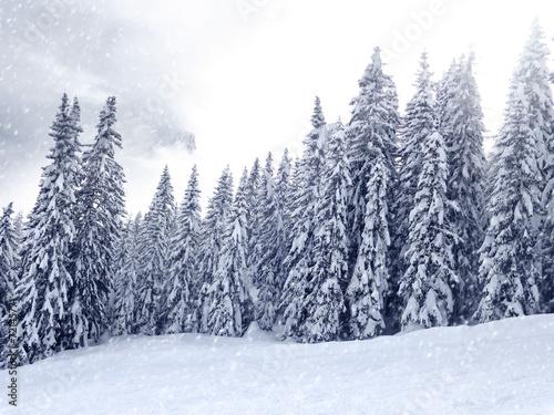 Foto auf AluDibond Rosa hell Winter Landscape