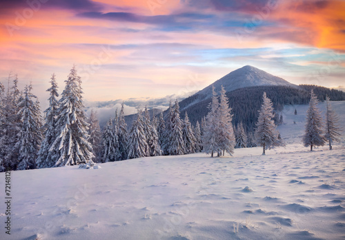 Poster Bleu nuit Colorful winter sunrise in the foggy mountains