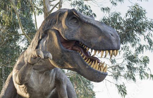 Fotografie, Obraz  Tyrannosaurus rex