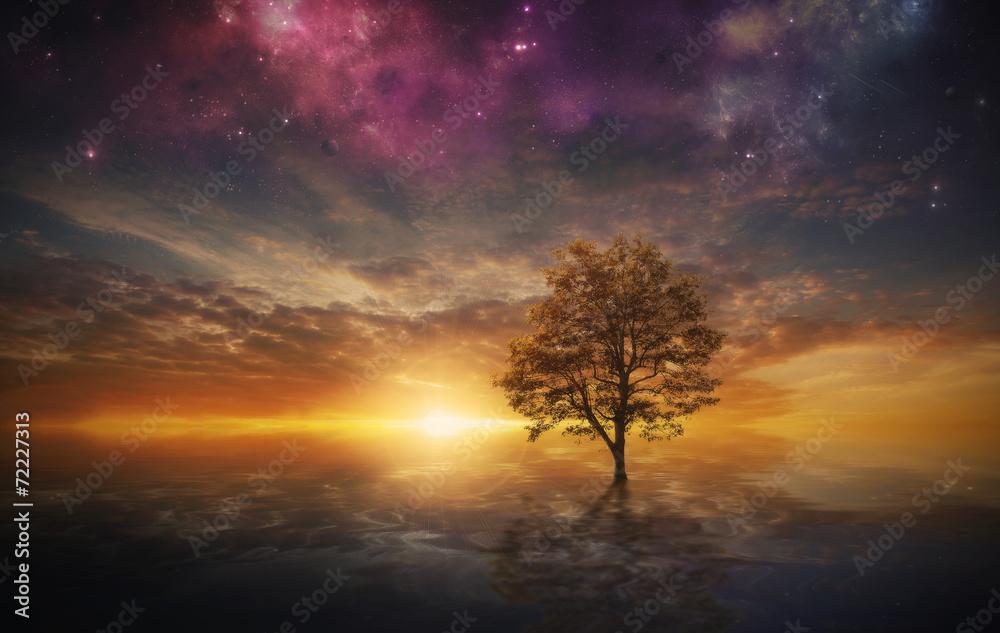 Fototapety, obrazy: Surreal tree in lake