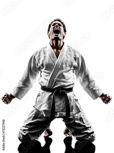 Photo Stands Martial arts judoka fighter man silhouette