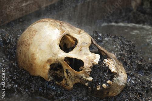 Fotografía  Cráneo humano genuino figuraba como escena del crimen, enfoque muy estrecho