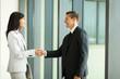 businessman handshaking with businesswoman