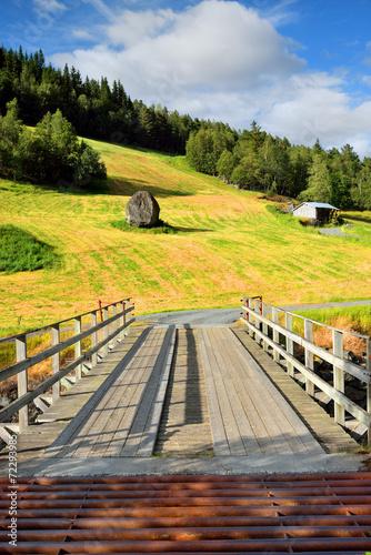 Okleiny na drzwi - przestrzenne 3D  norwegia-mostek-z-zabezpieczeniem-przeciw-przechodzeniu-bydla