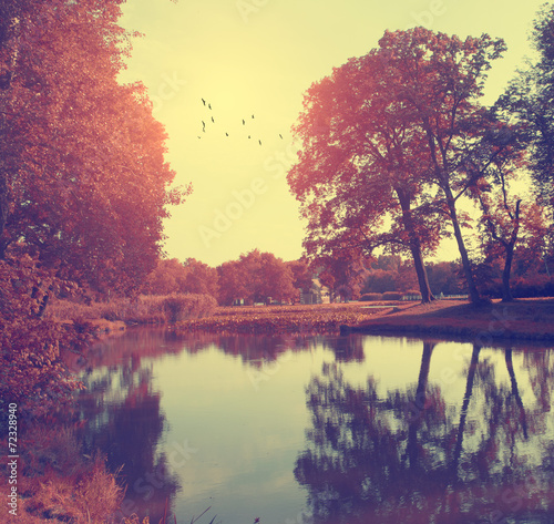 Foto op Plexiglas Crimson Autumn scene