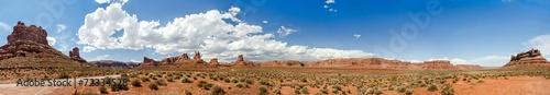 Steinwüste USA Panorama